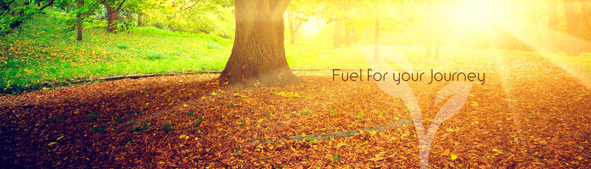 Fuel for Your Journey