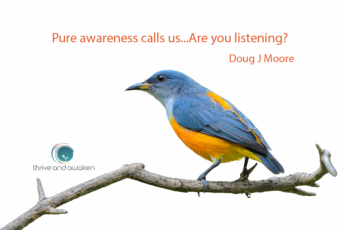 Inspirational quote - Pure awareness call us, are you listening? by Doug J Moore