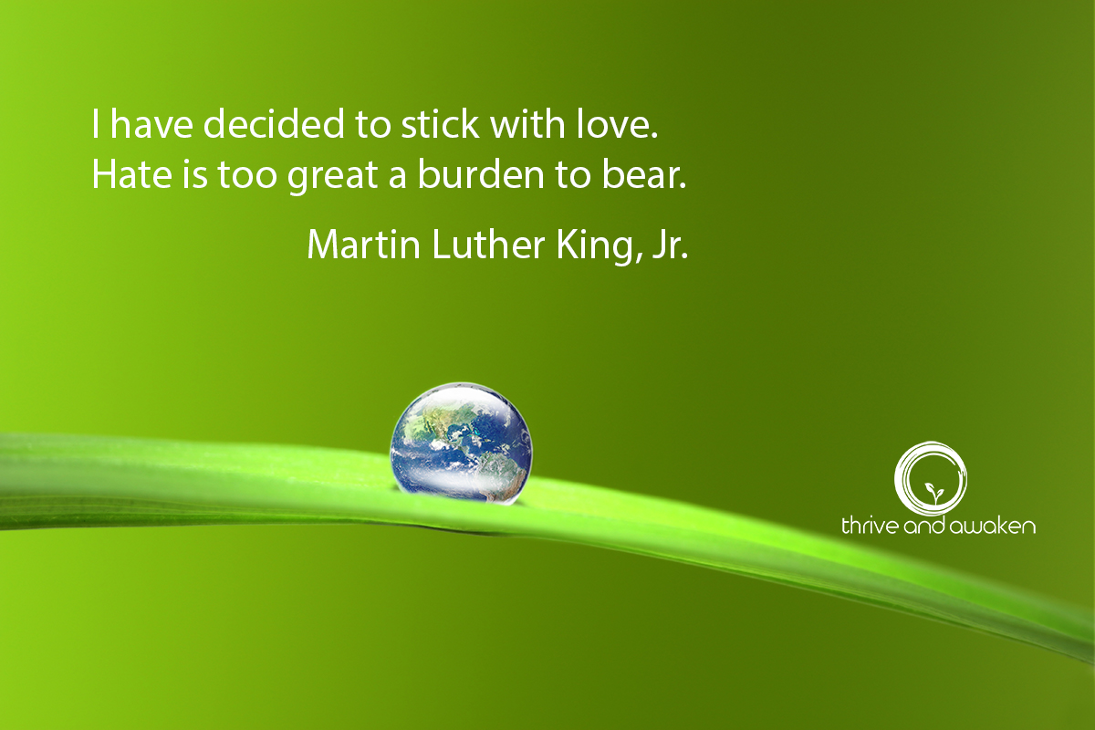 Inspirational Quote - I have decided to stick with love. Hate is too great a burden to bear. by Martin Luther King., Jr.
